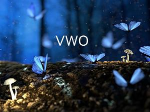 【VWO】新興国株式市場に投資が出来るコストの低いETF