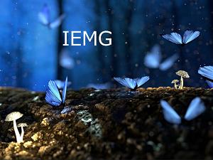 【IEMG】ブラックロックの低コスト新興国株式ETF
