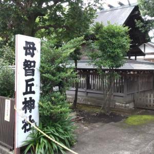 【母智丘神社】東京都町田市