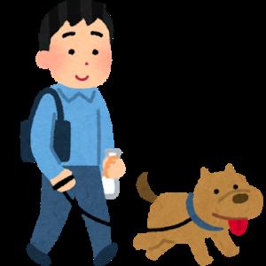 【絶対にやってください!】サラリーマンの時にこそ、しておけばよかったこと!私は、犬を飼うこと・・・