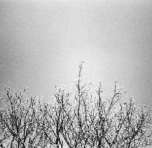 nature_【#14】