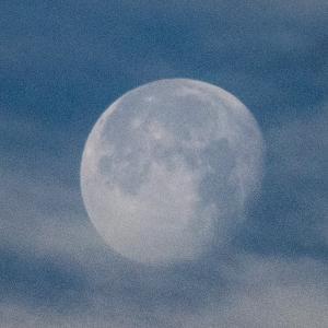 天体観測  立待月