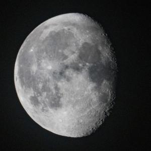 天体観測 居待月