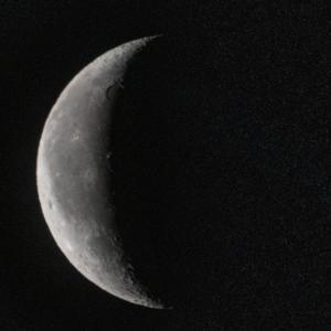 天体観測 有明月