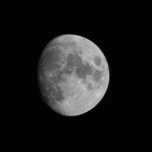 月見 十日余の月