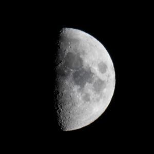 月見 宵月 八日月