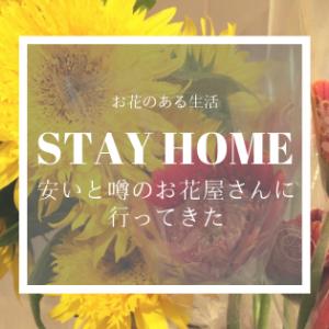 【激安花屋に行ってきた】お花のある生活【横浜駅西口】