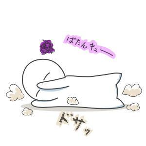 今日のブログはおやすみにします。