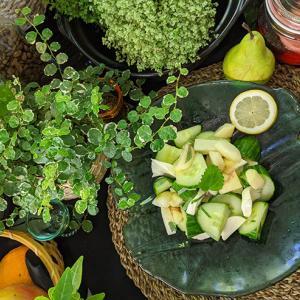 桃とモッツァレラのペパーミントサラダ
