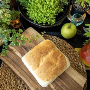 ふんわり食パンとトマトのムシ