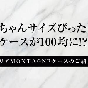リカちゃんサイズぴったりのケースが100均に!?【セリアMONTAGNEケースのご紹介】