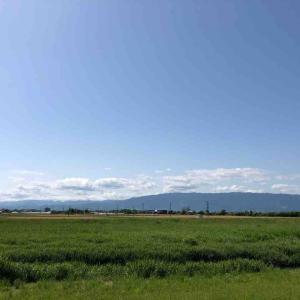 散歩道「空が好き」【写真・空が好き】
