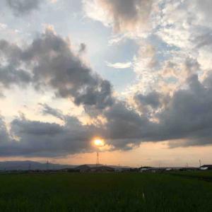 空を見上げて「夕陽の散歩道」【写真・空】