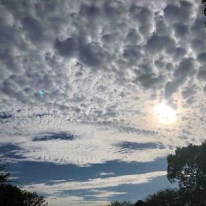 空を見上げて深呼吸「曇り空」【写真・空】