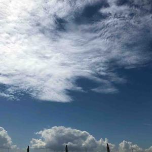 空を見上げて「福岡空港展望デッキより」福岡県【写真・空】