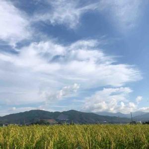 空を見上げて深呼吸💕空が好き♪【写真・空】