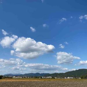空を見上げて💕 空が好き 【写真・空】