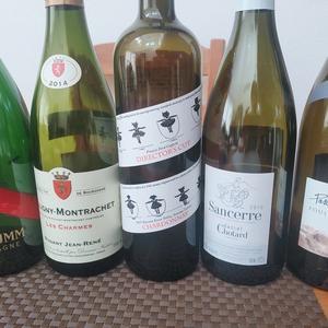 田崎真也さんがワイン検定の魅力を語る