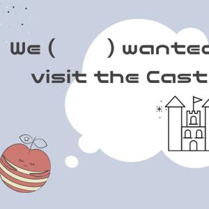 私たちはそのお城に行きたいと思っている。