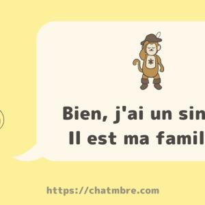 【avoir】Bien, j'ai un singe. Il est ma famille.