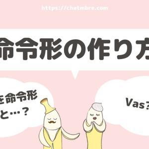 【命令形の作り方】tu vas → va
