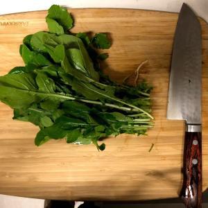 謎野菜 アルグラ(サラダにお勧め)