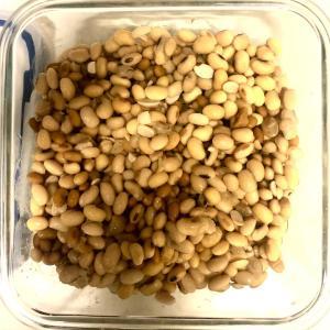 自由研究:納豆つくってみた!