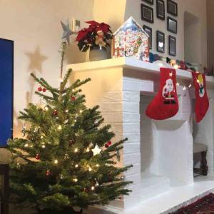 2人でお家クリスマス