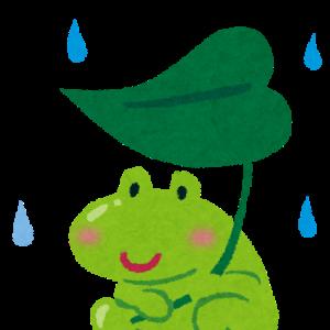 梅雨入りしちゃいました( ノД`)