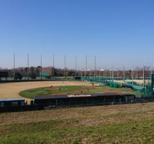 【球場ガイド】ヤクルト戸田球場-河川敷でプロ野球を楽しめるのどかなグラウンド