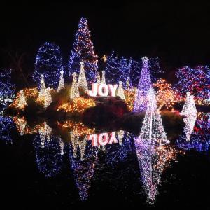 バンクーバー/Festival of Lights@Vandusen Botanical Garden
