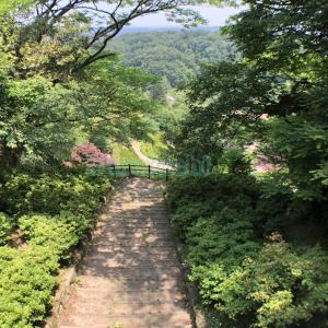 林道の中にある階段 1
