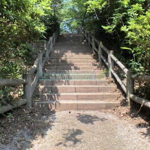 林道の中にある階段 2