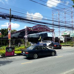 タイの植物市場