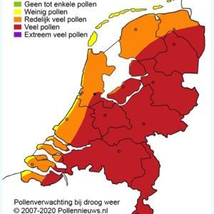 オランダ花粉情報