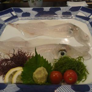 イカ丸に乗って呼子港から七ツ釜へ&海中レストランでイカコース…イカ三昧ですね