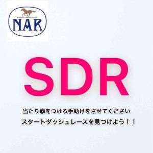 地方競馬【SDR】スタートダッシュレース