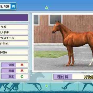 1000〜2400バランスブレイカーは普段なら絶対に育てて無かった馬の中にいた