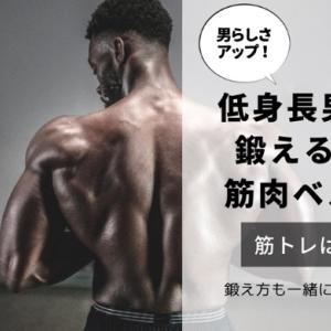 男らしさアップ!低身長男子が鍛えるべき筋肉部位ベスト3!