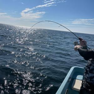 釣り技能とビジネスの相関性 タイラバ