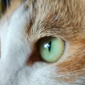 目:明るいところ
