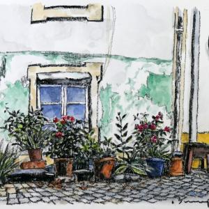 古い窓と鉢植えの薔薇たち