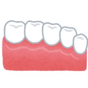 歯が…歯が…ハガッ。