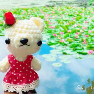八郎沼公園にスイレンを見に行って来ました♪