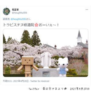 お客さまからのあみぐるみのお写真♡トラピスチヌ修道院と桜♡