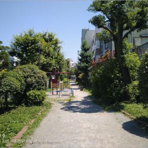 炎天下の公園、東京