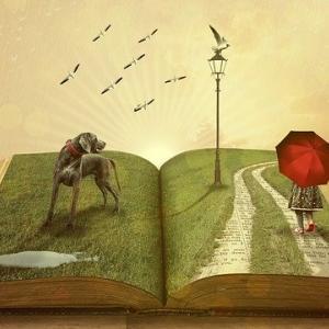 気持ちが良い本の読み方の話