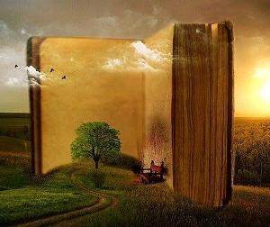月50冊の本を読む私の イマイチ頭に入らない本の読み方