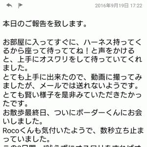 帰省3日目(19日夕方)