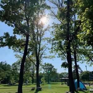 キャンプ…! じゃないけど、外で遊びました~芽室公園~